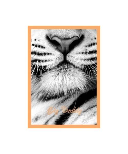 Postkarte - Big Daddy