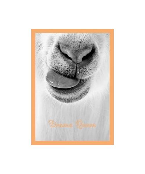 Postkarte - Drama Queen